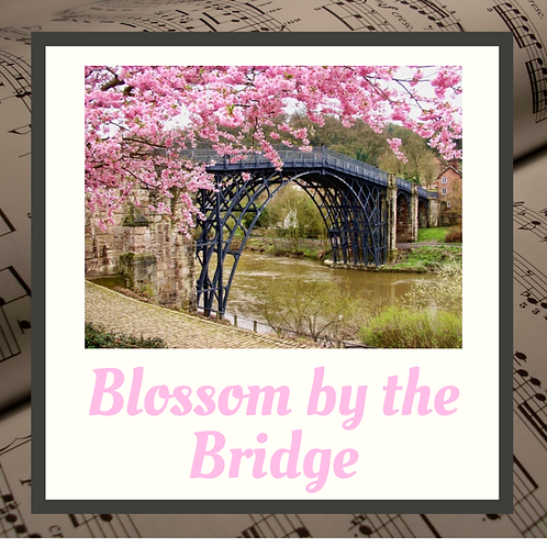 Blossom by the Bridge