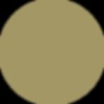 מגן זהב.png