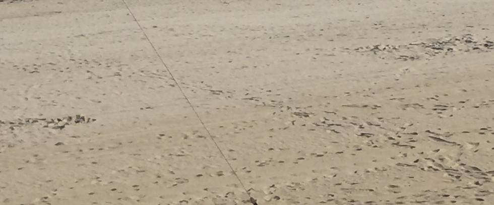 Catamaran plage de la Baule