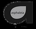 asphaleia_edited.webp