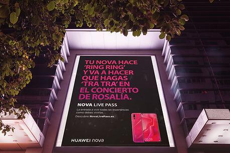 calle-rosalia.jpg