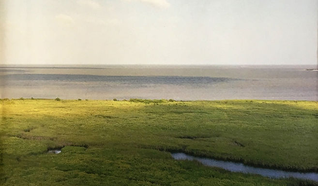 SSPEED's Jim Blackburn releases book, A Texan Plan for the Texas Coast