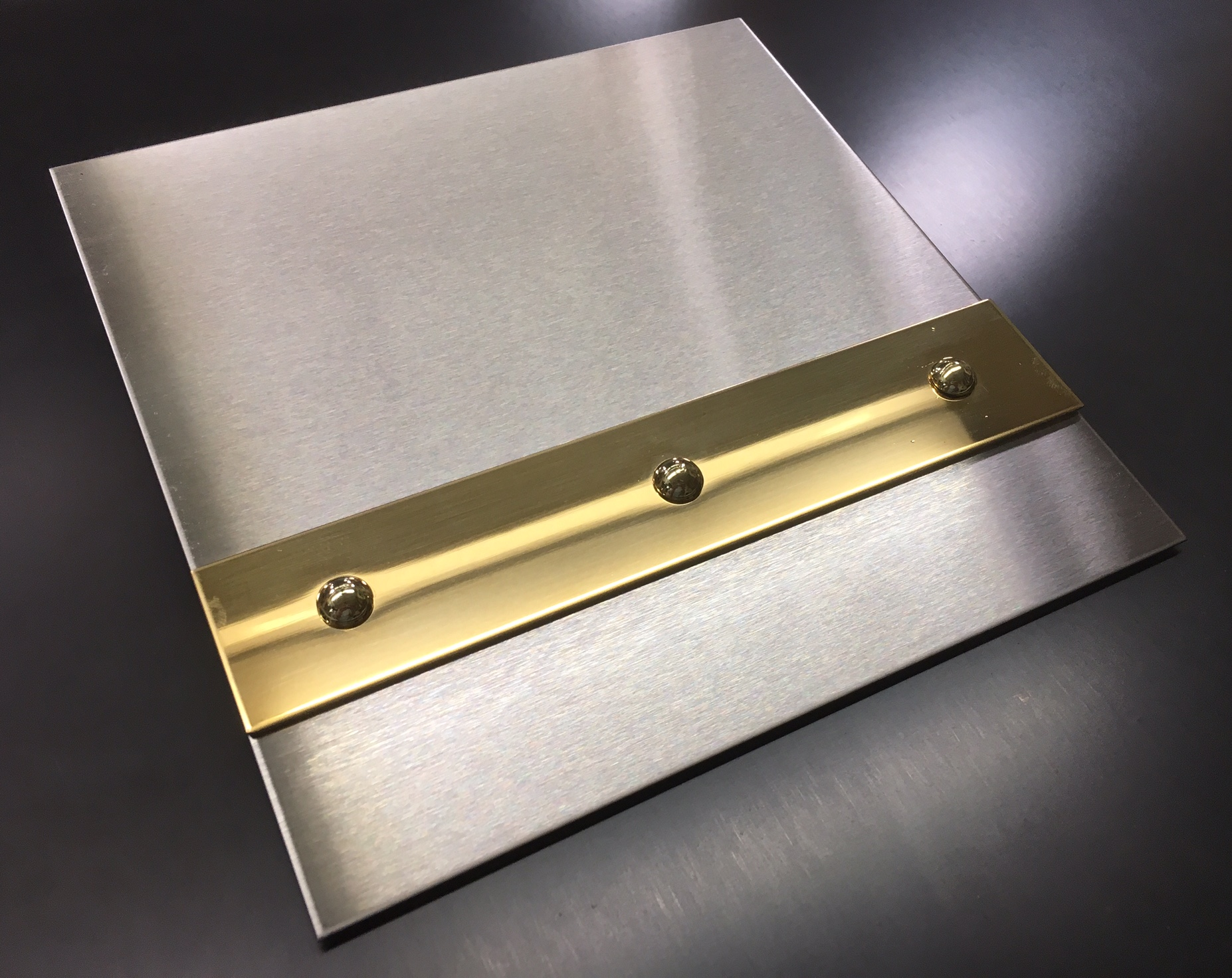Brushed Stainless with Mirror Brass Banding