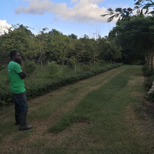 Un guide au jardin botanique des Cayes