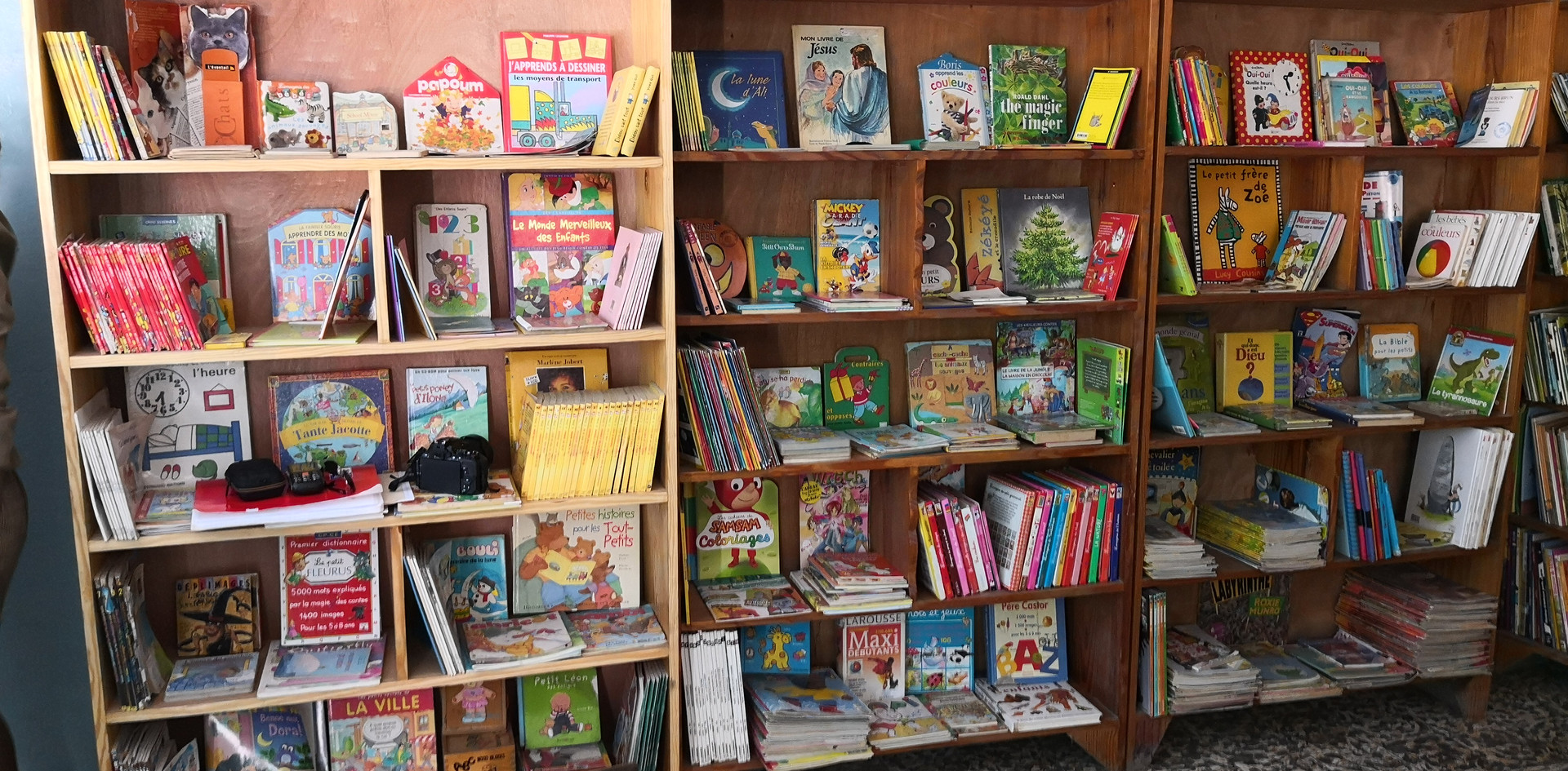 Bibliothèque de l'école de Port-au-Prince