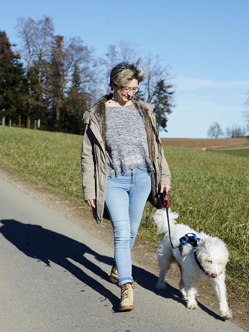 Selbstständige Spaziergänge mit Hund Benji