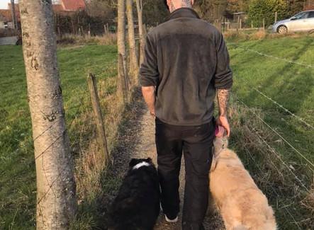 Wandelen met jouw hond