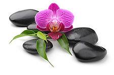 Orchidee-o7.jpg