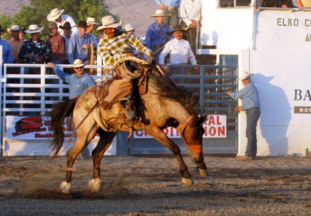 cowboy01934871.JPG