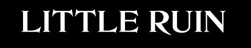 LR_Logo_White.jpg