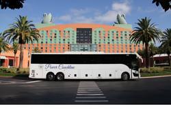 centererd-bus-swan-resized