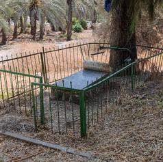 About two pioneers from Kibbutz Kinneret