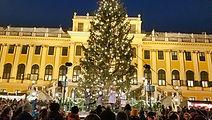 Schonbrunn Vienna Christmas Market (4).j
