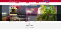 BIB Michelin web