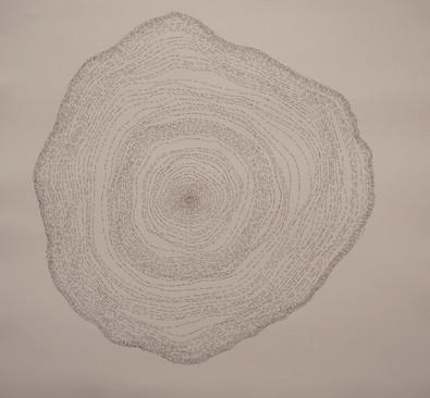 Rings, 2014