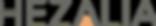 Hezalia-Logo-Grey+Orange.png