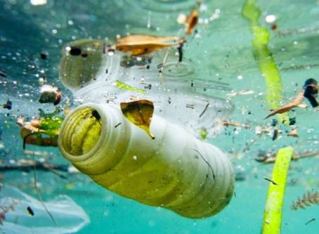8 giugno: Giornata degli Oceani, ma il Mediterraneo è invaso dalla plastica.