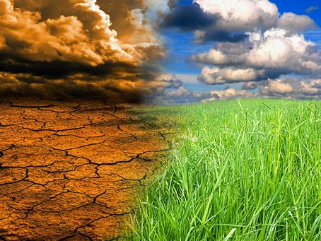 CO2 quasi ai livelli del Pliocene, quando la Terra era un pianeta interamente tropicale...
