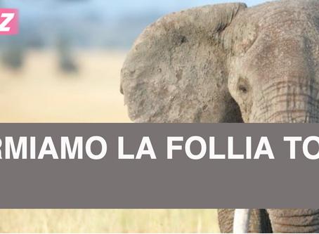 Firma la petizione per fermare il ritorno al passato inquinante che Total vuole realizzare in Africa