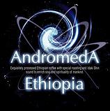 アンドロメダエチオピアコーヒー