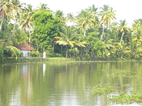 A day in Kumarakom