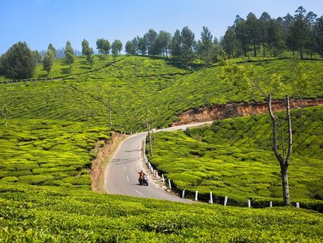 Various Destination of Kerala