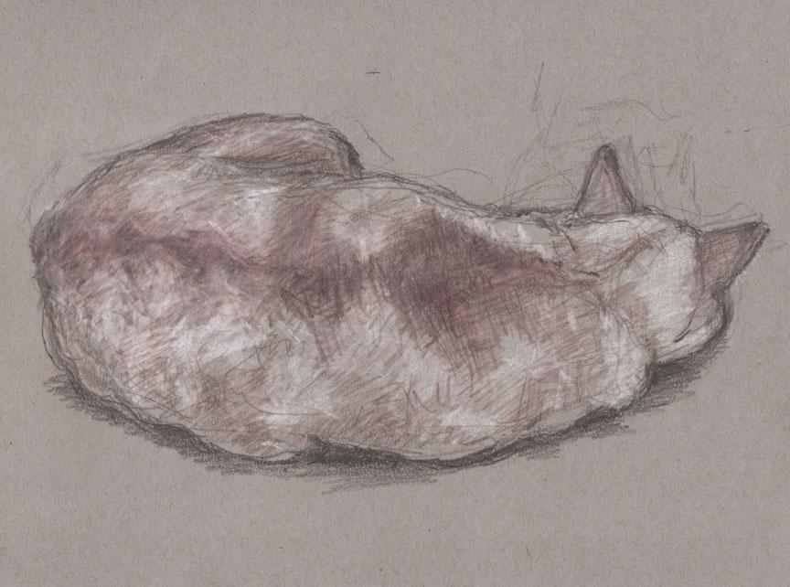 Belle, Meatloaf w/Ears