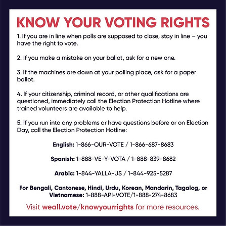 Voting Rights Info Card- Downloadable