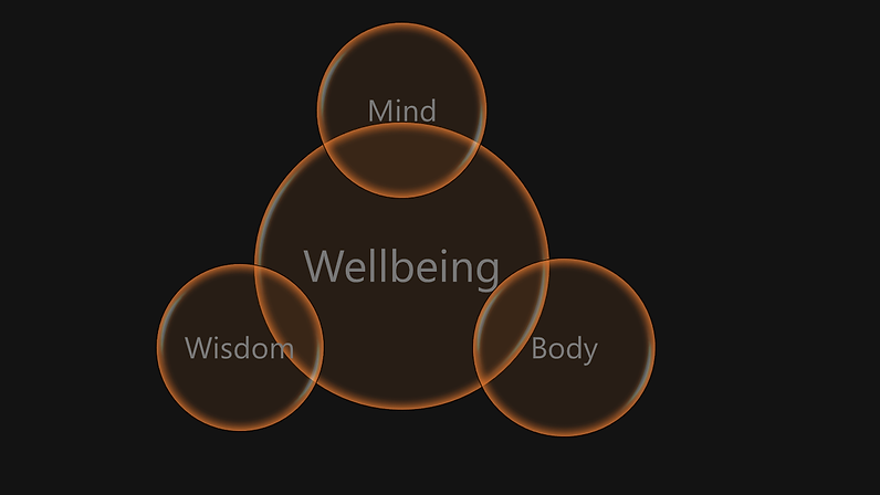 Graphic Mind body wisdom wellbeing no logo.png