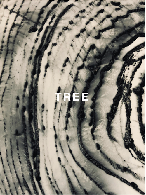 """TREE"" SILK SCARF"