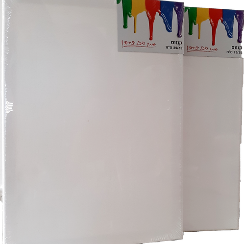 Canvases ( 3 pack)