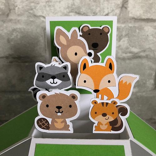 Woodland Animal Birthday Box Card
