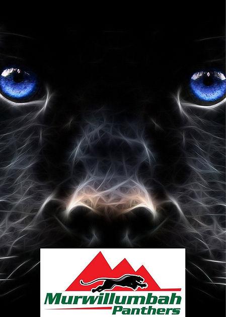 Murbah Panther Face.jpg