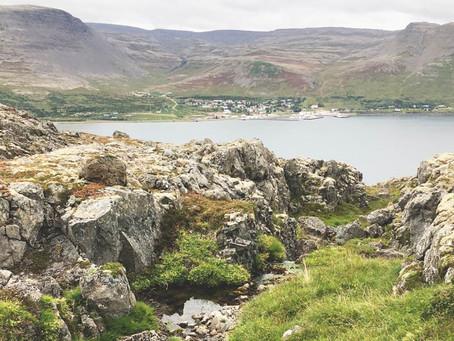 """""""Svarið er í náttúrunni"""""""