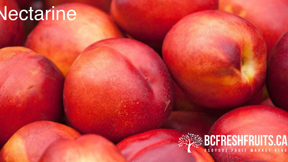 NECTARINES - Medium Basket