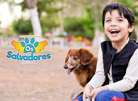 Lei sobre Educação e Proteção de Animais nas Escolas, É APROVADO no Estado do RS