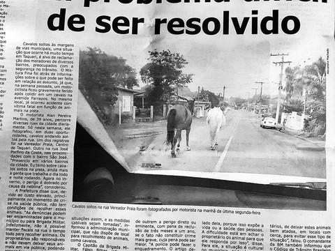 Reportagem sobre cavalos soltos por Taquari/RS