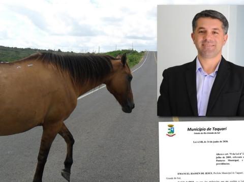 Prefeito Maneco sanciona lei de recolhimento de animais soltos em TAQUARI/RS