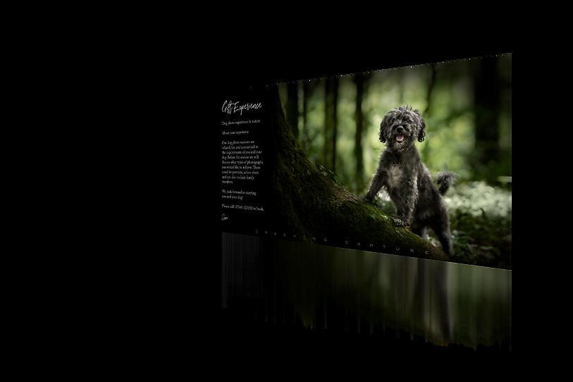Dog Voucher for Websute.png