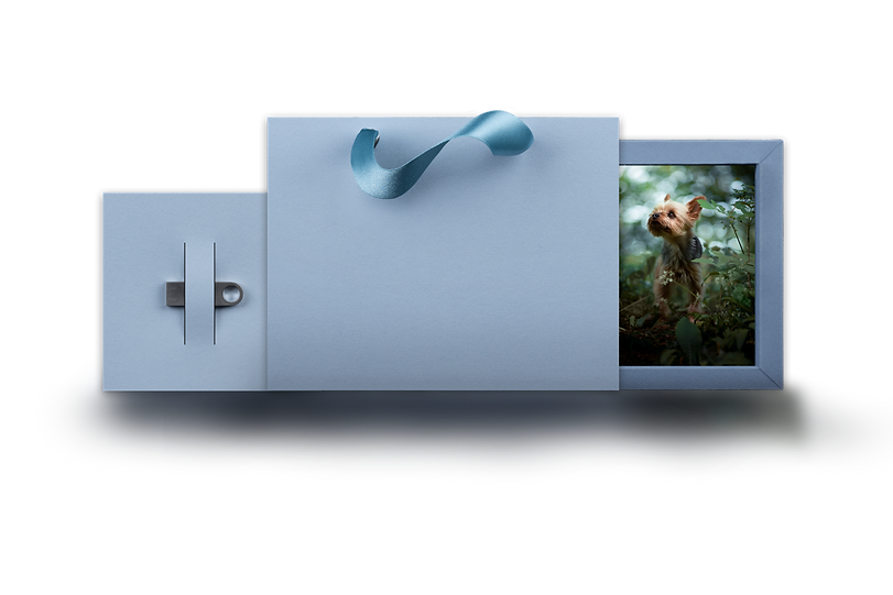 USB Box for Website copy.png