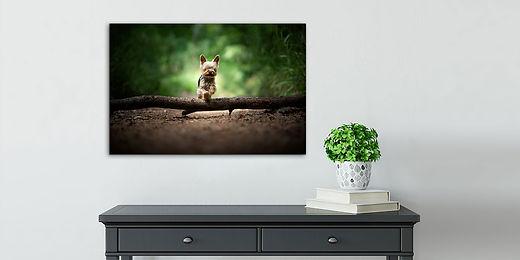 Acrylic Frame Example.jpg