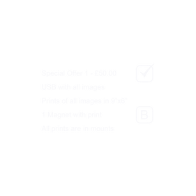 Online Payment Instructions 2.png