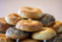 Benevolence Bagels promo pics-1-23.jpg