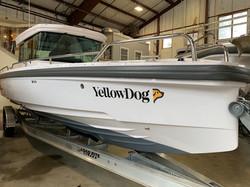 Yellow_Dog_Boat.jpeg
