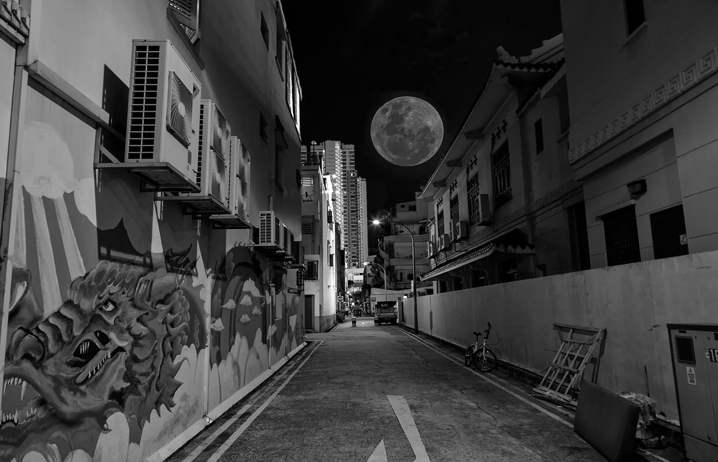 Margaret Kossowski - The moon in Singapore - HONOUR