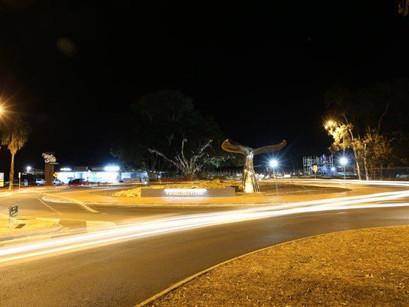 NIGHT SHOOT: Pialba Whale Tail