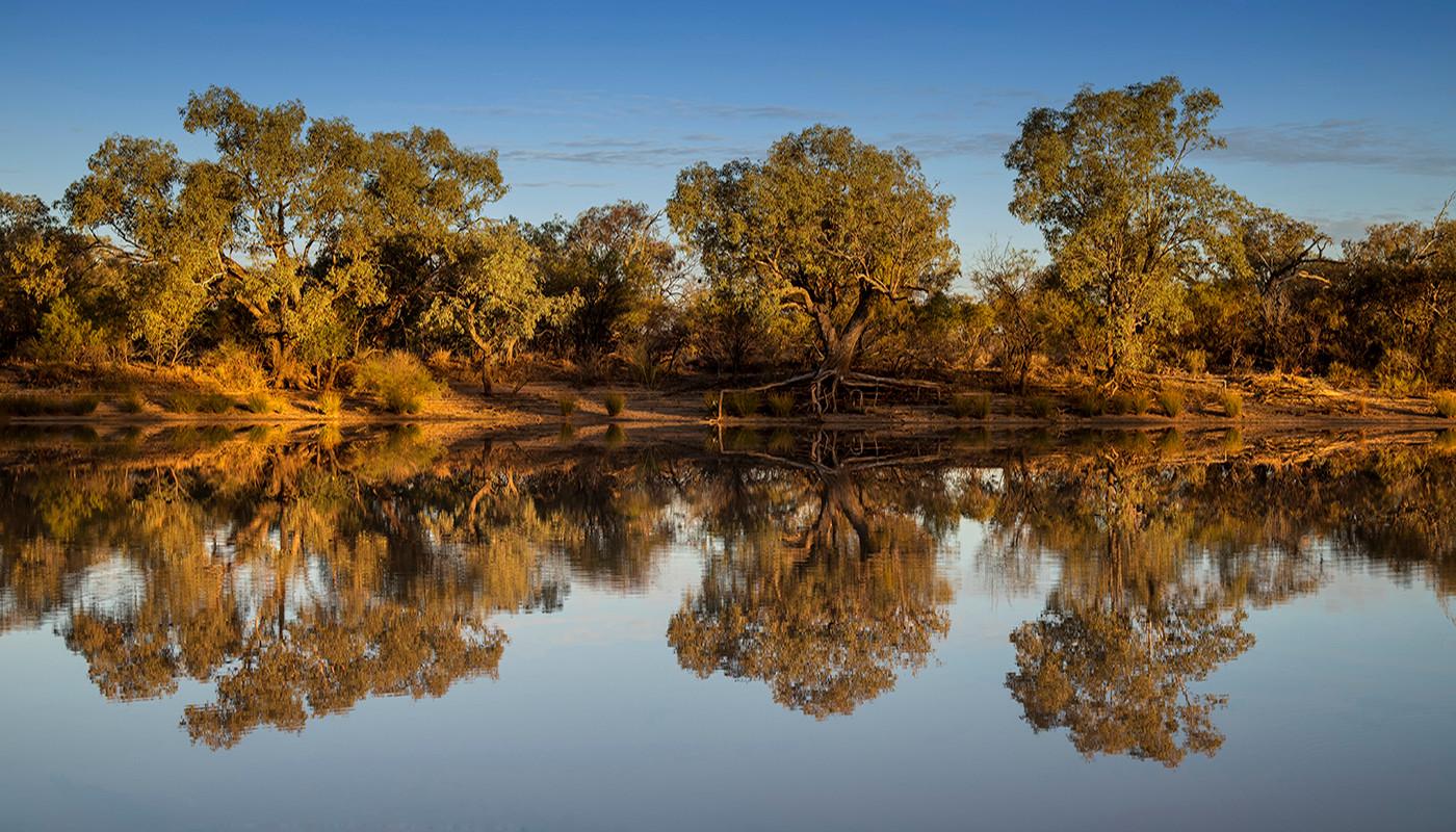 Margaret Kossowski - River Reflection HONOUR