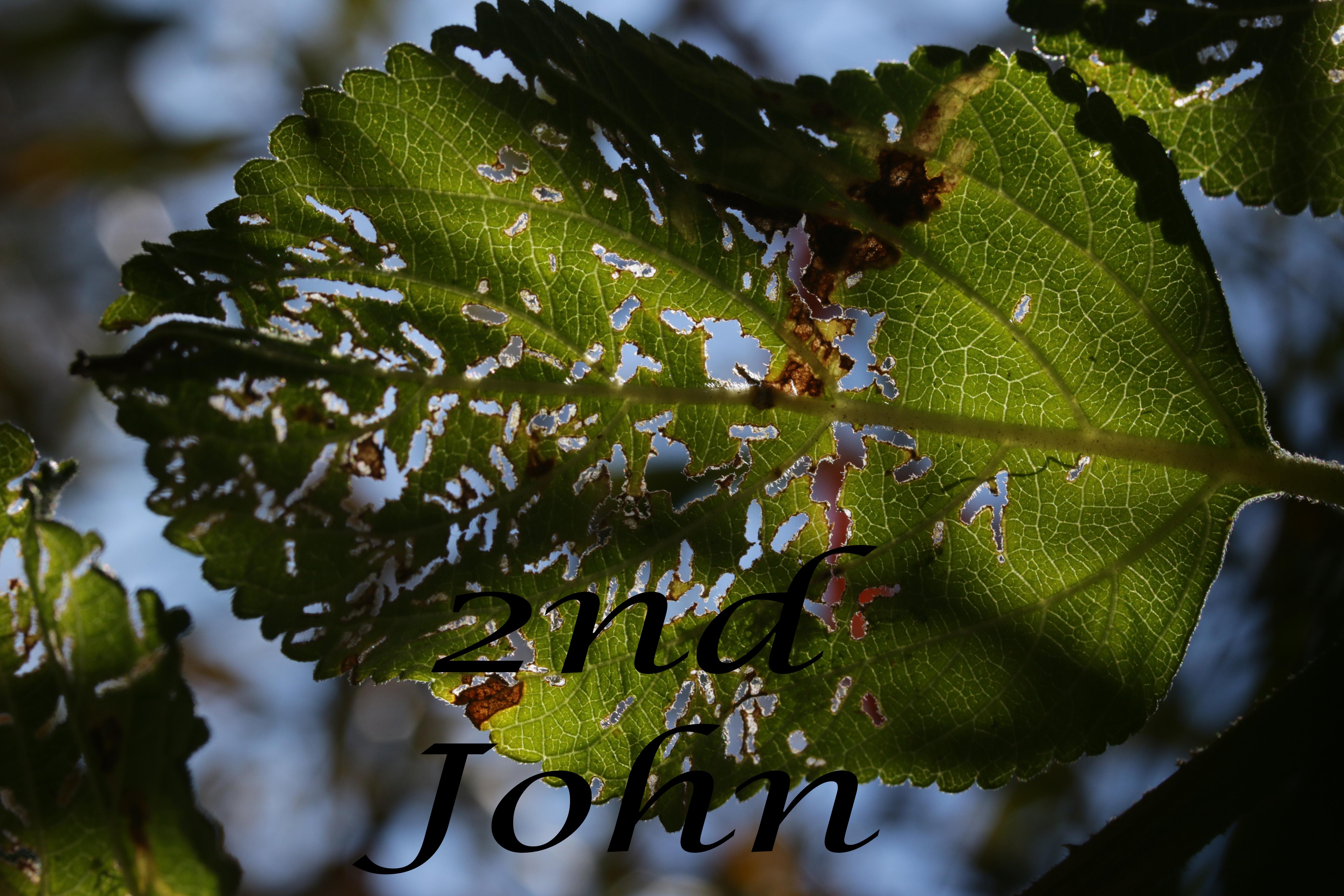 2nd John Abbott