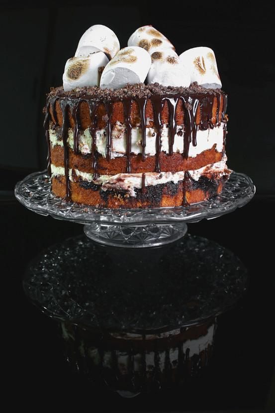 Judy Keegan - S'mores Cake - MERIT