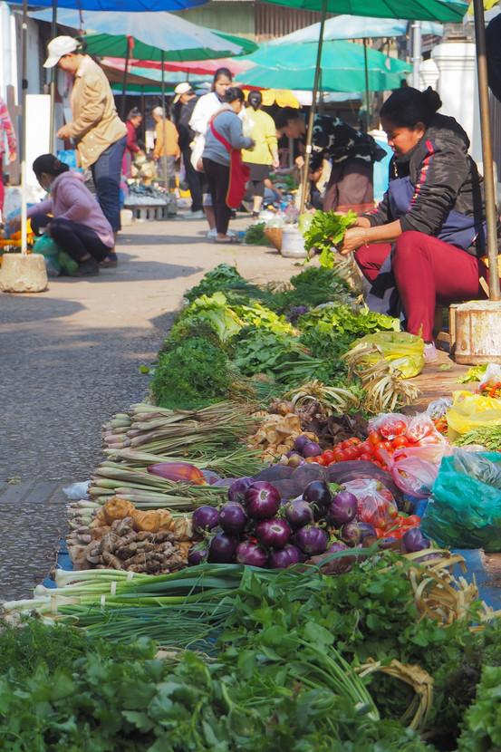 Lynette Webb- Market day - MERIT